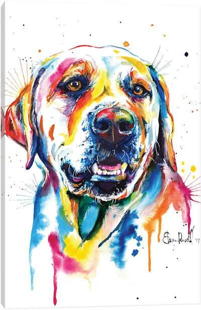 canvas wall art by weekday best icanvas yellow lab art on icanvas wall art id=17829