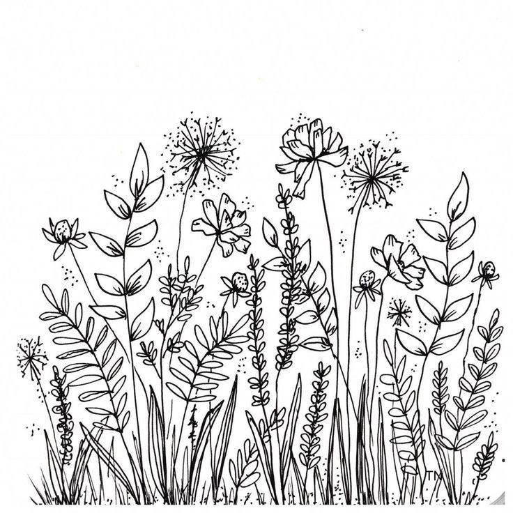 Photo of Fine art Botanical line art Floral Fine line clipart Line drawing clip art Hand drawn