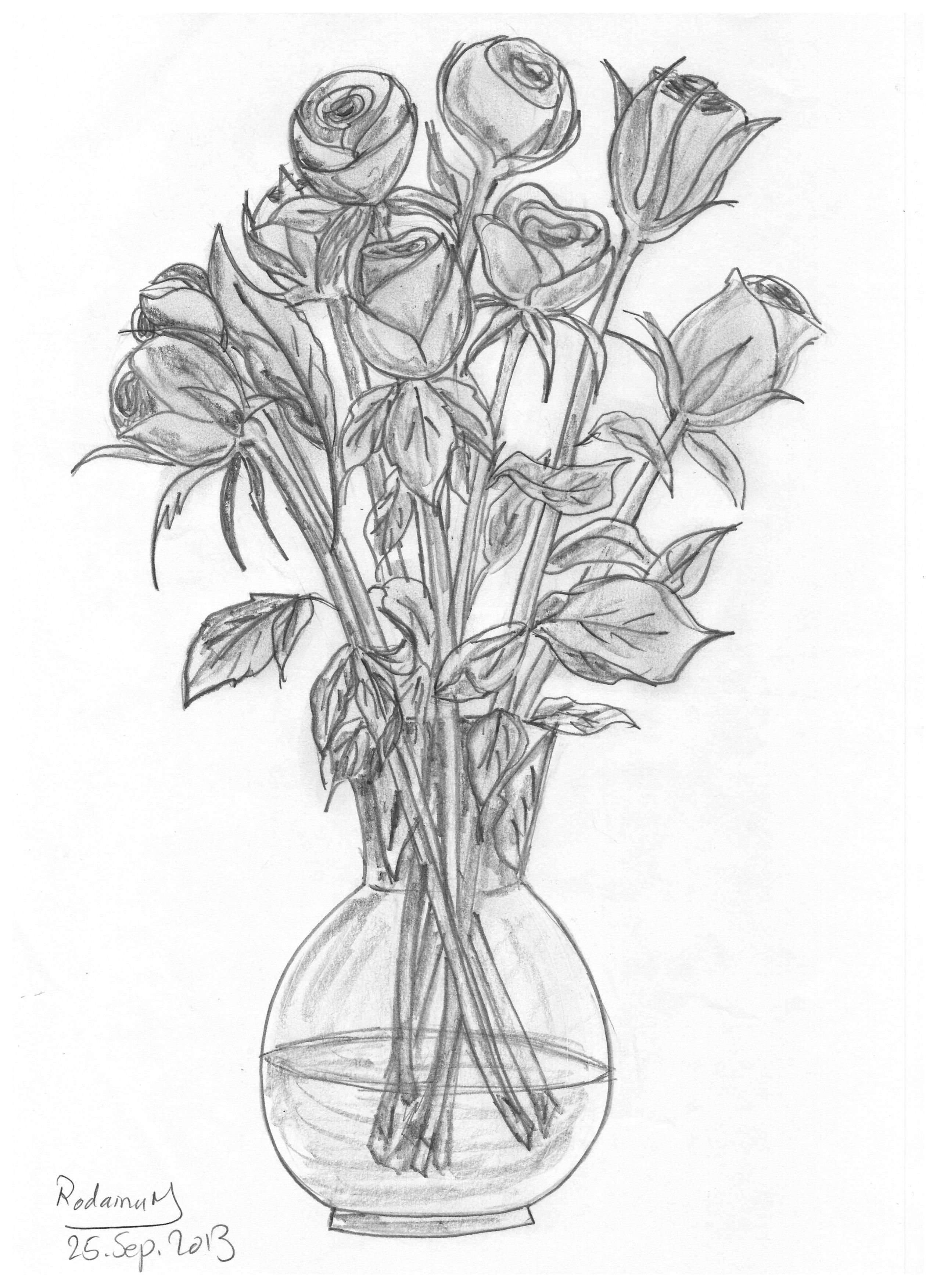 roses in vase drawn in 2013 pencil sketch Flower