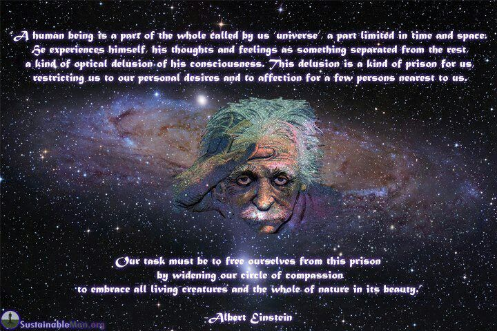 you are only the center of your own universe einstein quotes