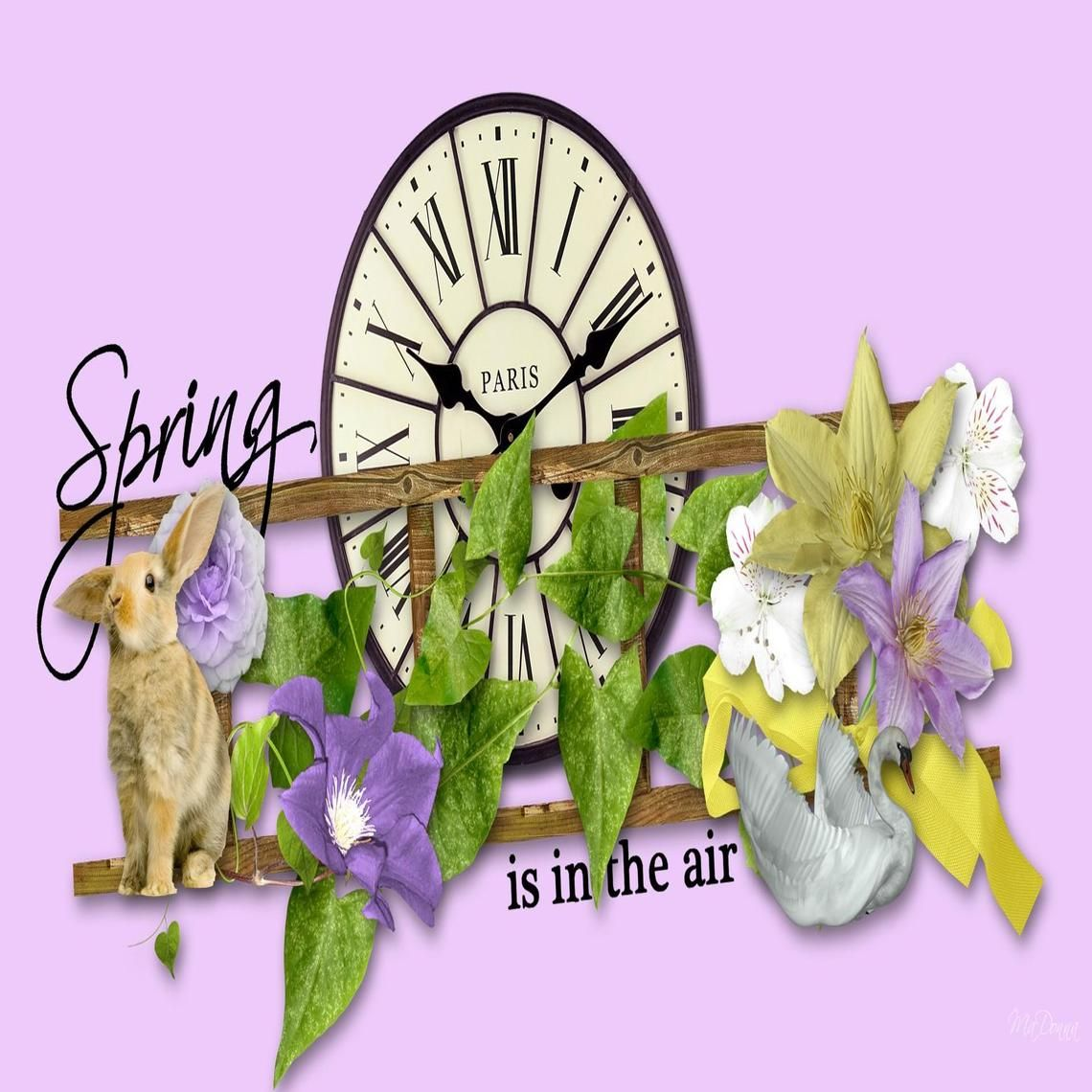 Spring in the Air