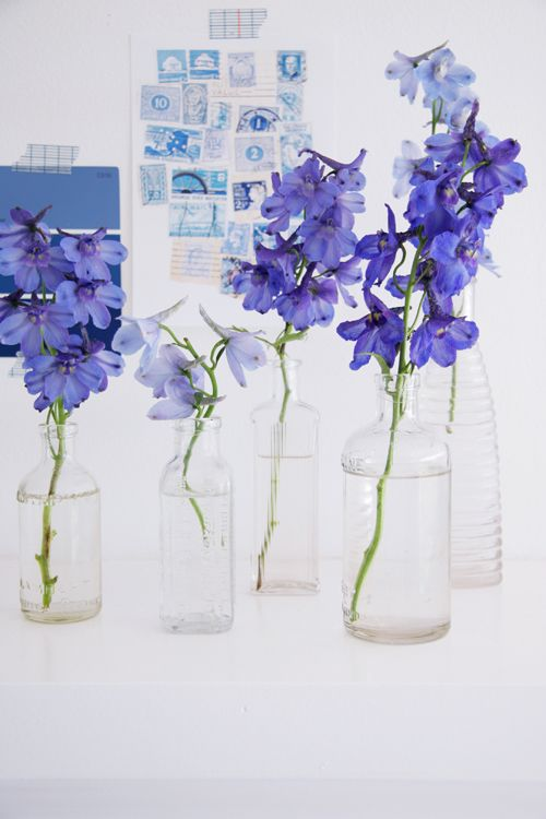 unplanned flowers in a jar