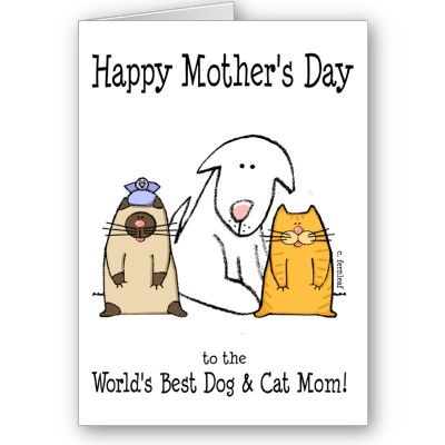 Happy Mother S Day World S Best Dog Cat Mom Card Zazzle Com Cat Mom Happy Mothers Day Pet Mom