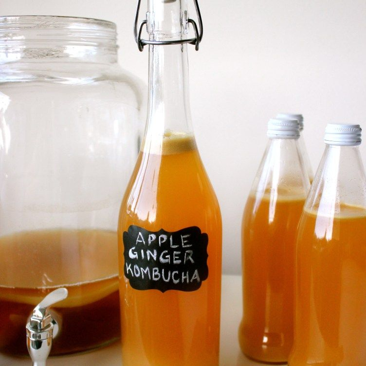 Beginners Guide to Kombucha Continuous Brew More