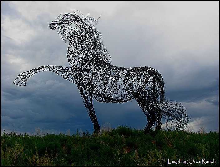 horse shoes, barbed wire, rebar   Inspired by horses   Pinterest ...