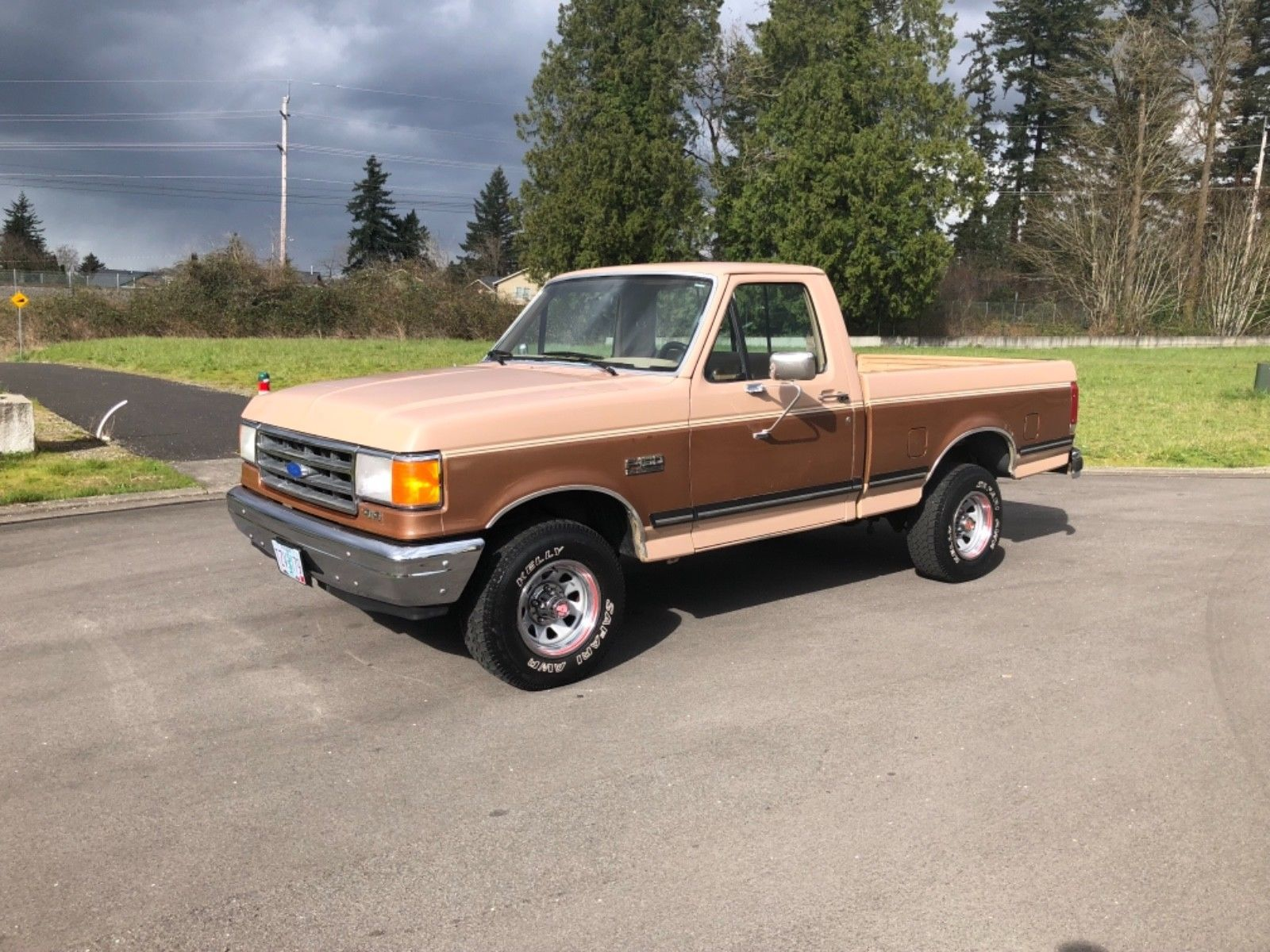 1989 ford f 150 1989 ford f 150 4x4 low miles only 89 k. Black Bedroom Furniture Sets. Home Design Ideas
