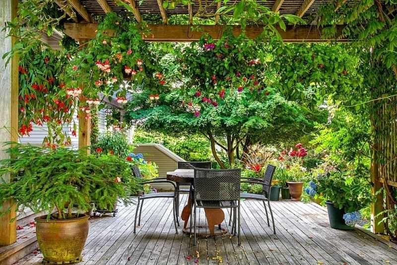 pergola bepflanzen - lauschiger garten und sichtschutz in einem, Gartengerate ideen