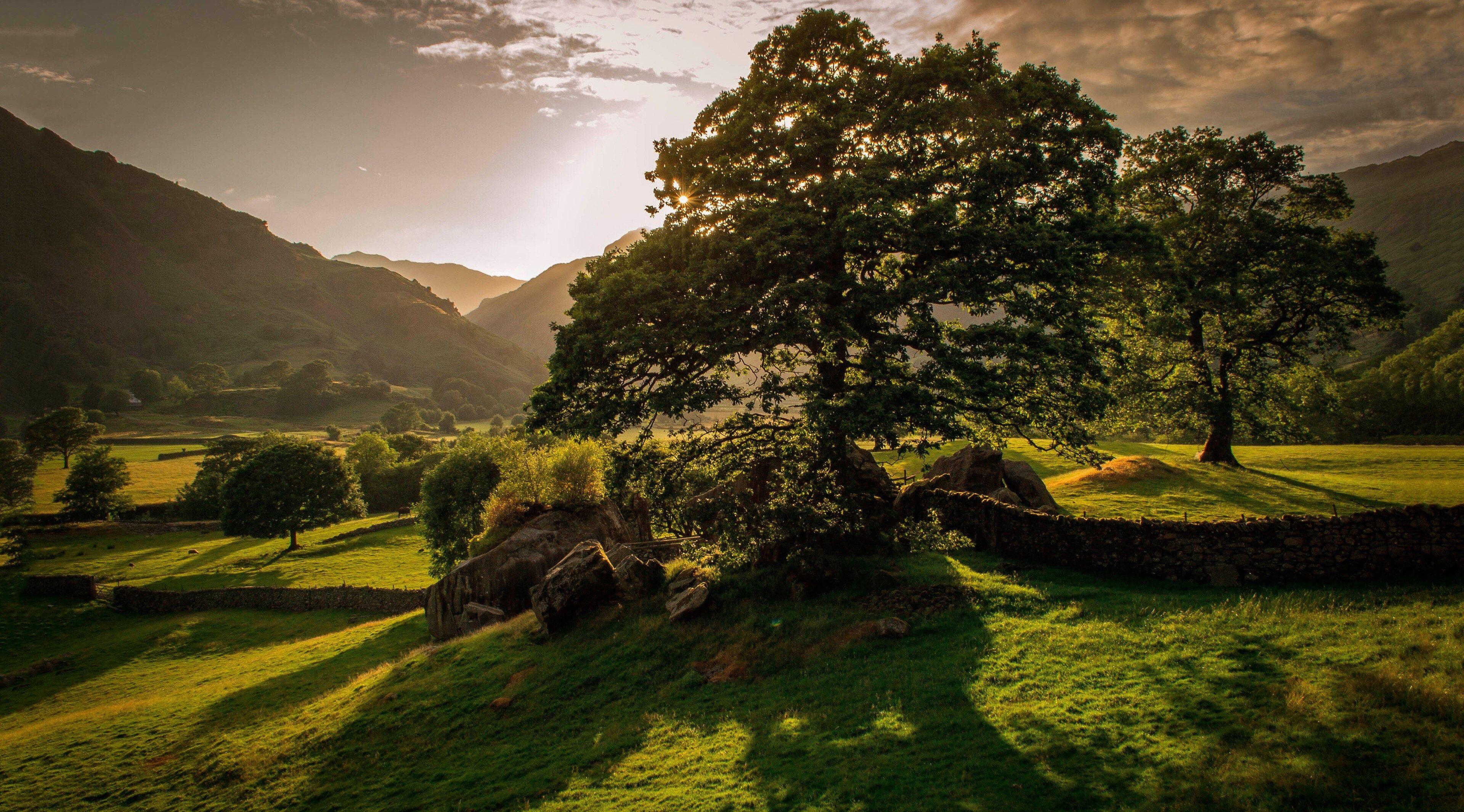 3840x2130 Ireland 4k Background Hd Wallpaper Irish Landscape Landscape Trees Nature Hd
