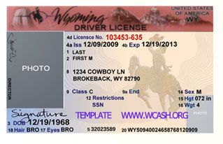 Template Wyoming Drivers License Editable Photoshop File Psd
