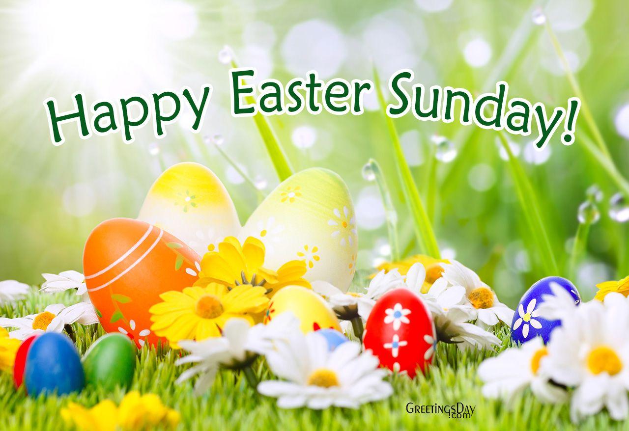 Easter Easterecards Httpgreetings Dayhappy Easter Online