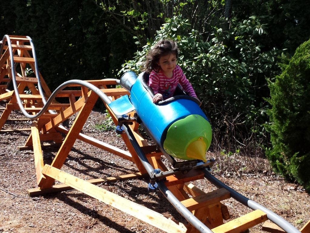 Every Now And Then We Come Across Homemade Roller Coasters Designed By Amateurs And Built In Their Own Homemade Roller Coaster Kid Roller Coaster Diy Backyard Diy backyard roller coaster