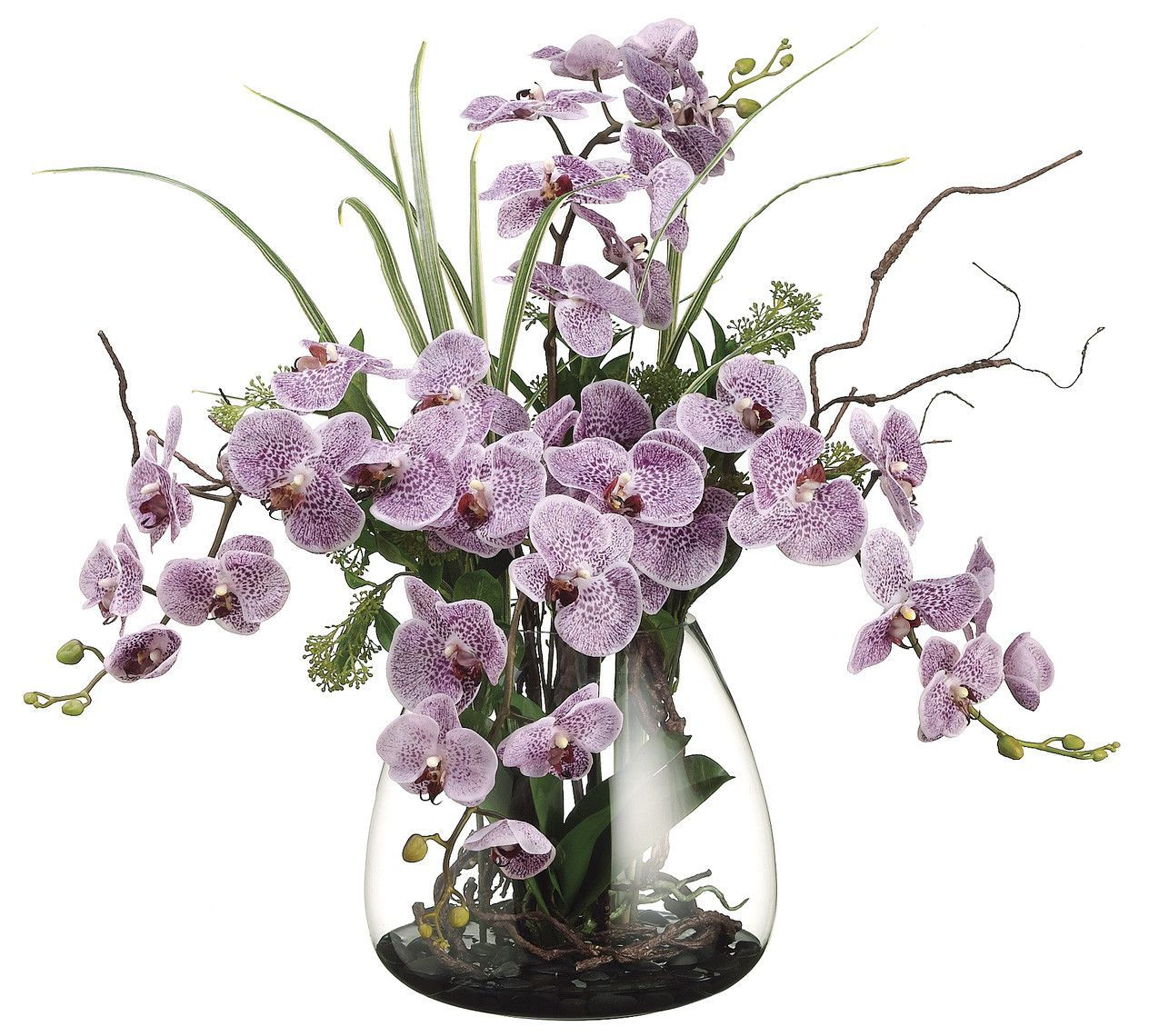 Phalaenopsis orchid skimmia and twig arrangement products
