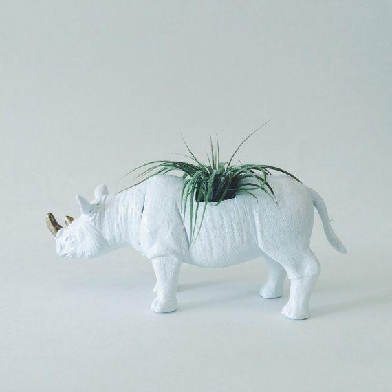 Rhinoceros bianco con corna d'oro fioriera con impianto di aria; Fioriera animale rinoceronte; Fioriera animali aria impianto; Tillandsia; Safari animali fioriera