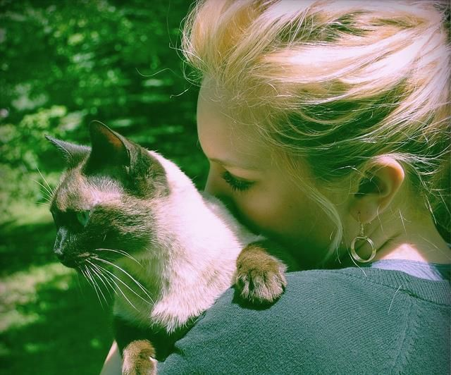 Most Animal Owners Know That Their Pets Make Them Happy And Scientific Research Agrees Exposure To Pets Has Been Shown To Reduce The I Pets Allergies Allergy Clinic