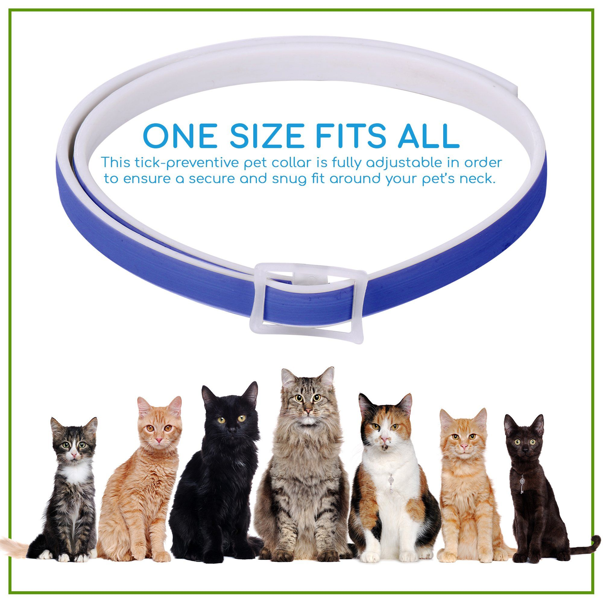 Waterproof Flea Catsideas Cat Fleas Pet Collars Cats And Kittens