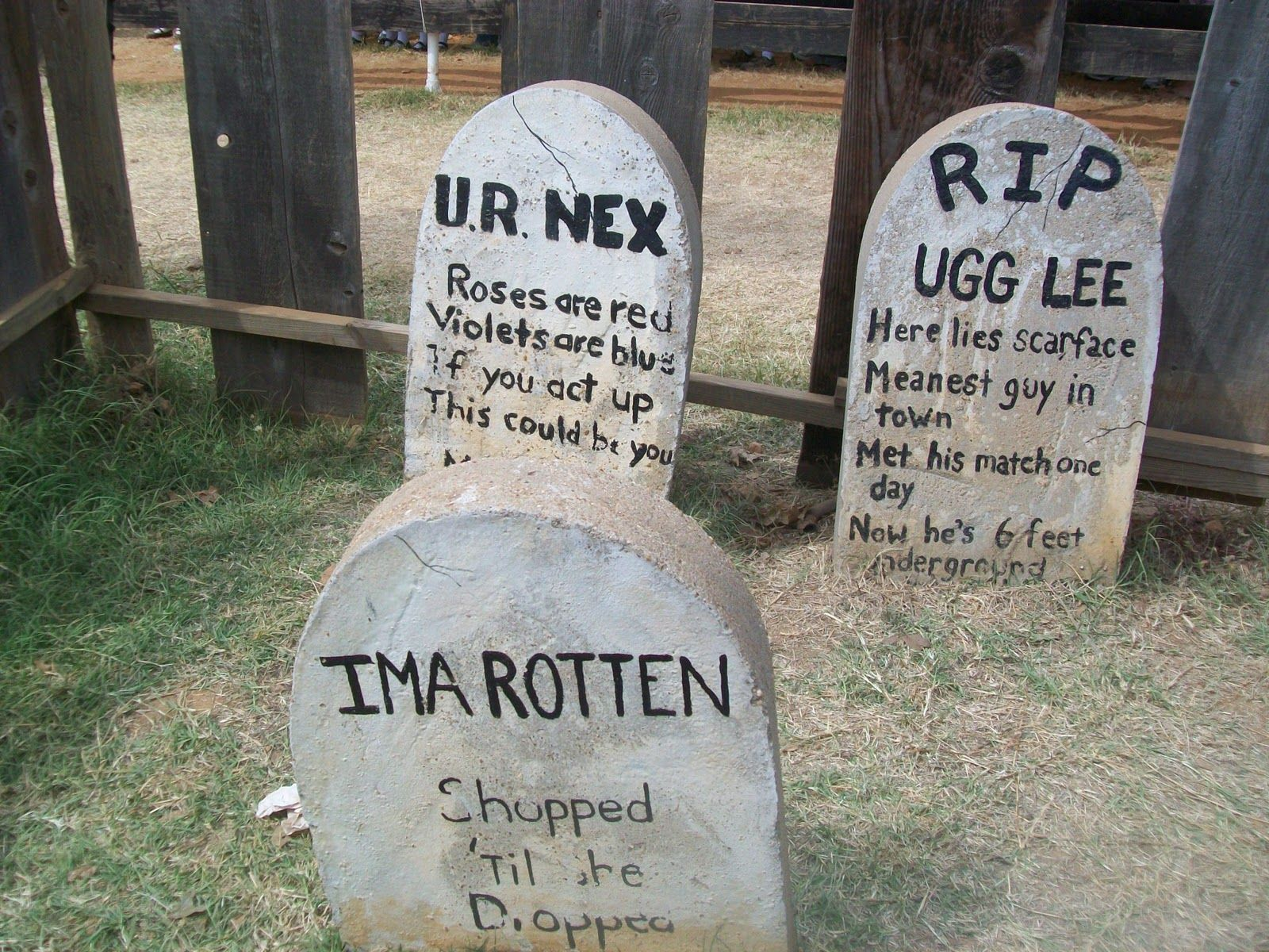 funny headstones for halloween Ladybug from Texas