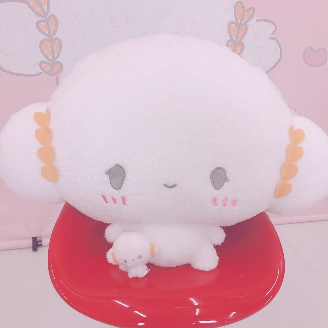 pin by kɪʟʟɪᴀɴ hoᴜ on cc cures hello kitty kitty character