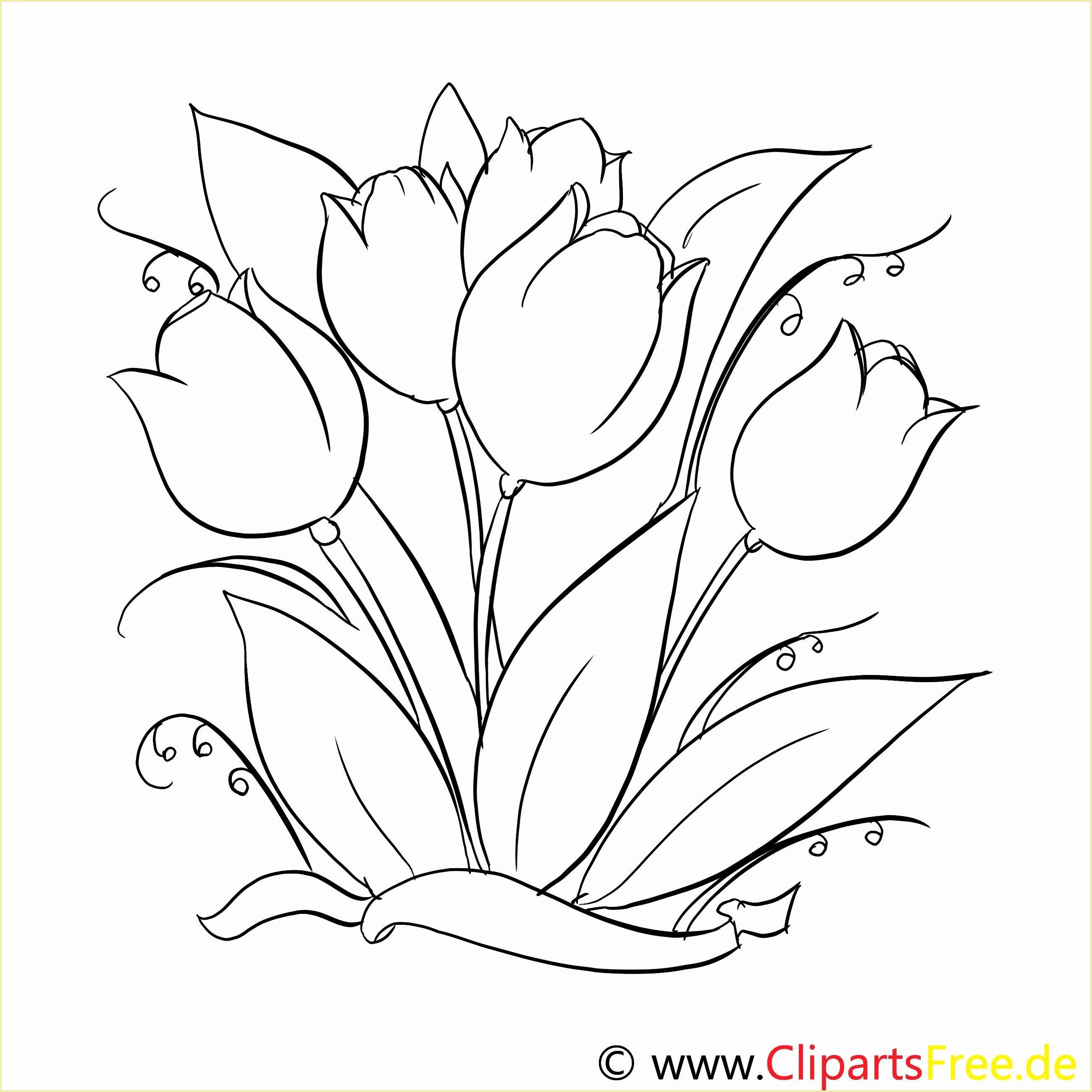 Frisch Malvorlagen Blumen Zum Ausdrucken Malvorlagen Blumen