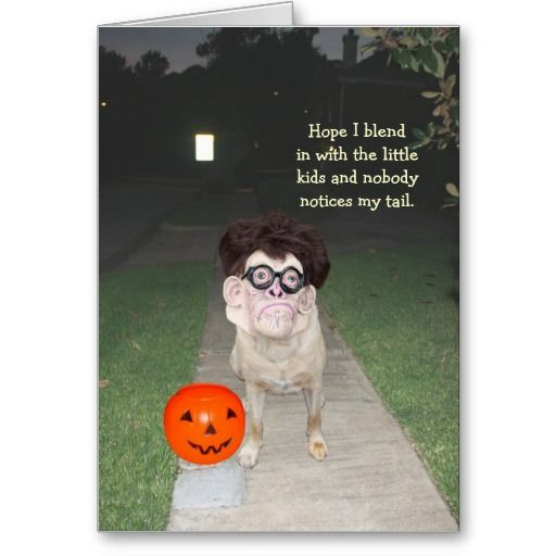 Funny Dog With Human Mask Halloween Card Dog Cards Funny Dogs