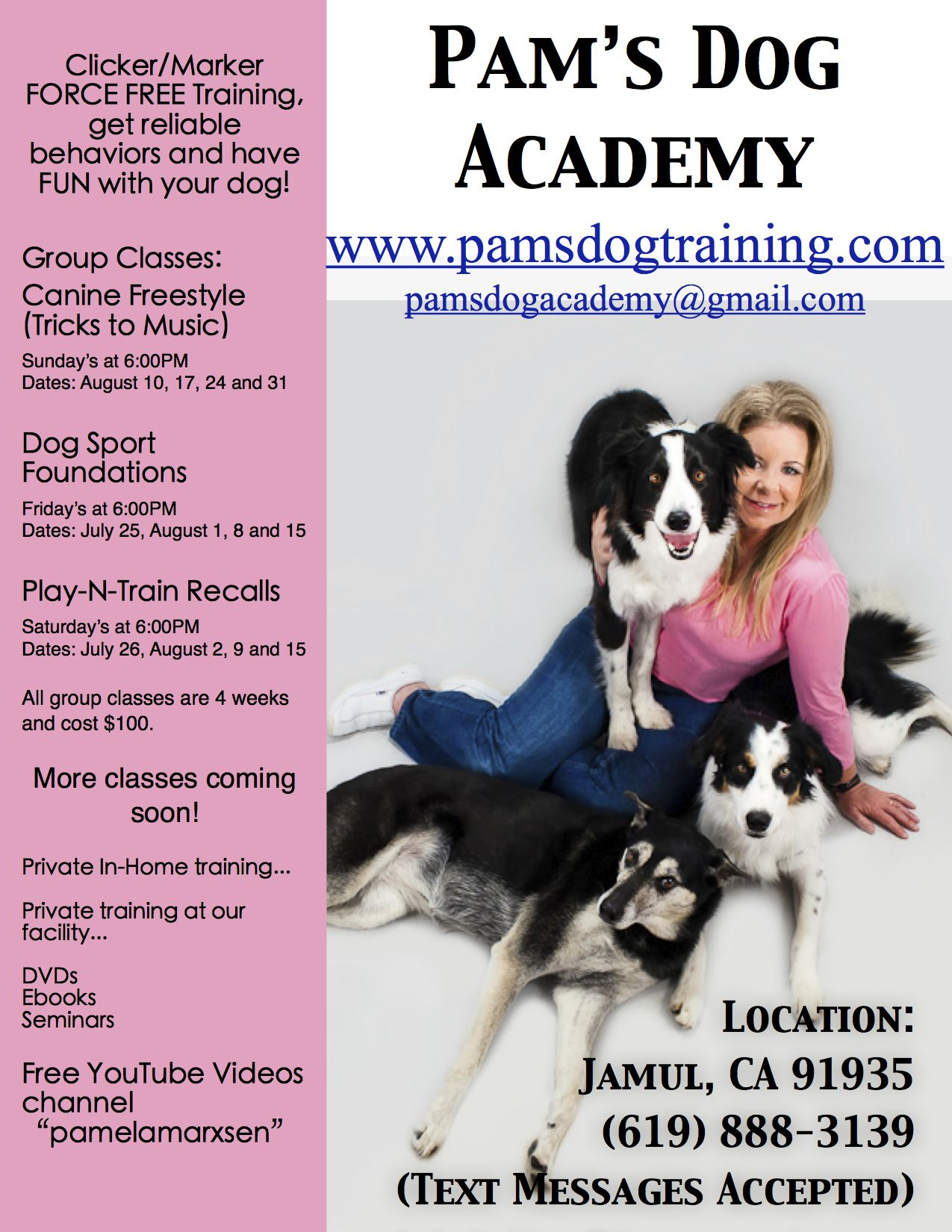 Dog Training Is The Best Way To Help Your Dog Dog Training