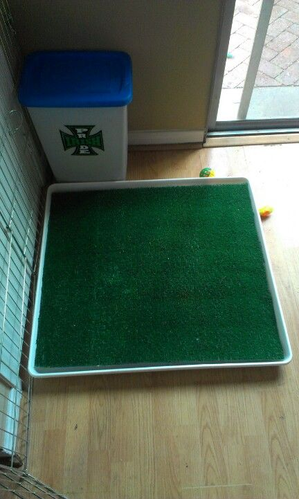 Diy Potty Patch Washer Drip Pan Mesh Grate Amp Synthetic
