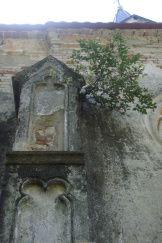 Ruins of St. Brcko church in Brckovljani, Croatia (photo by Martina Gracin).