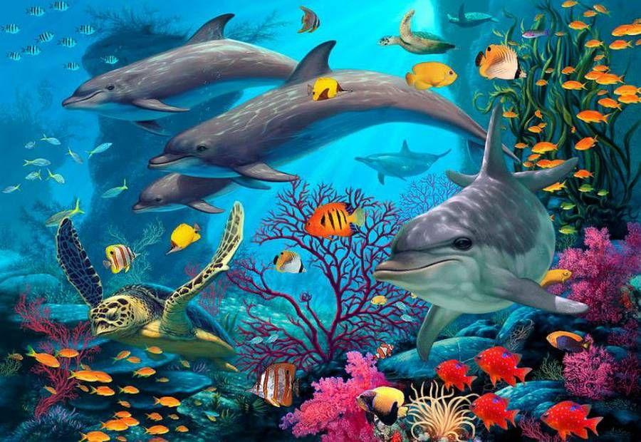 Картинки морская тема дельфины
