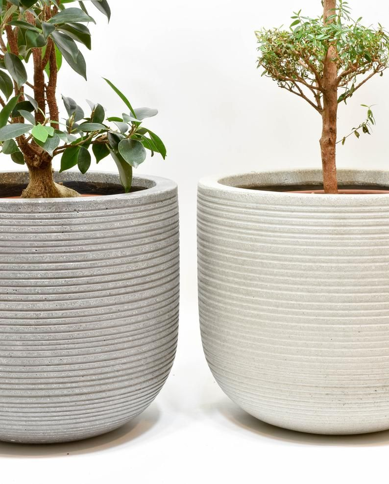 Cement Planter Pot Concrete