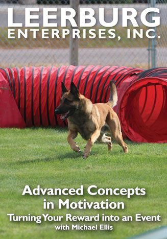 Advanced Concepts In Motivation W Michael Ellis Motivation Dog
