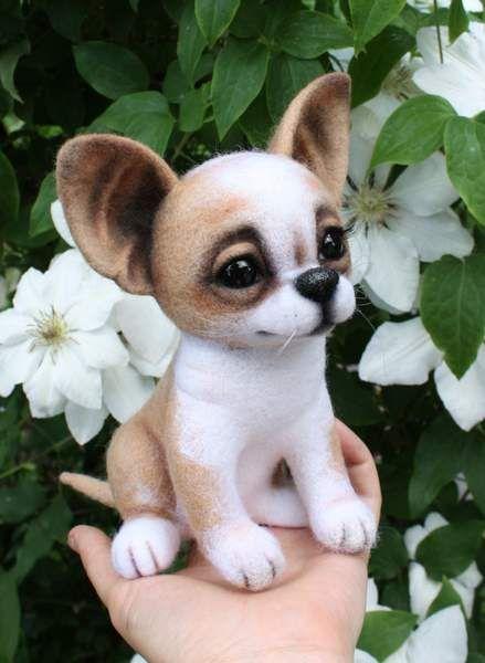 Chihuahua dog Rarity by By Klavdiya Kolodnytska | Bear Pile