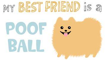 8578f7ed My Best Friend is a POOF BALL - visit website for Pomeranian gifts # pomeranian