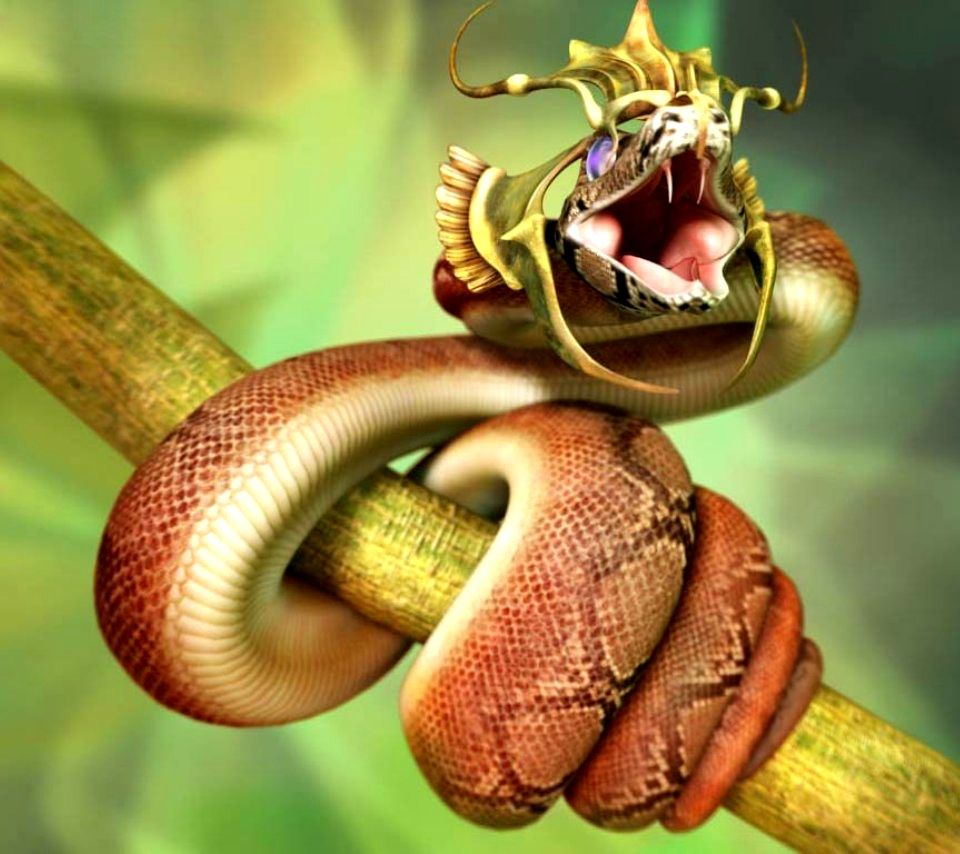 King Snake HD Pictures, Fantastic Snake Wallpaper