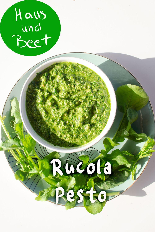 Rucola Pesto – das 2 Minuten Rezept - Haus und Beet