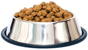 57 Uses For Petroleum Free Jelly Food Bowl Pet Food