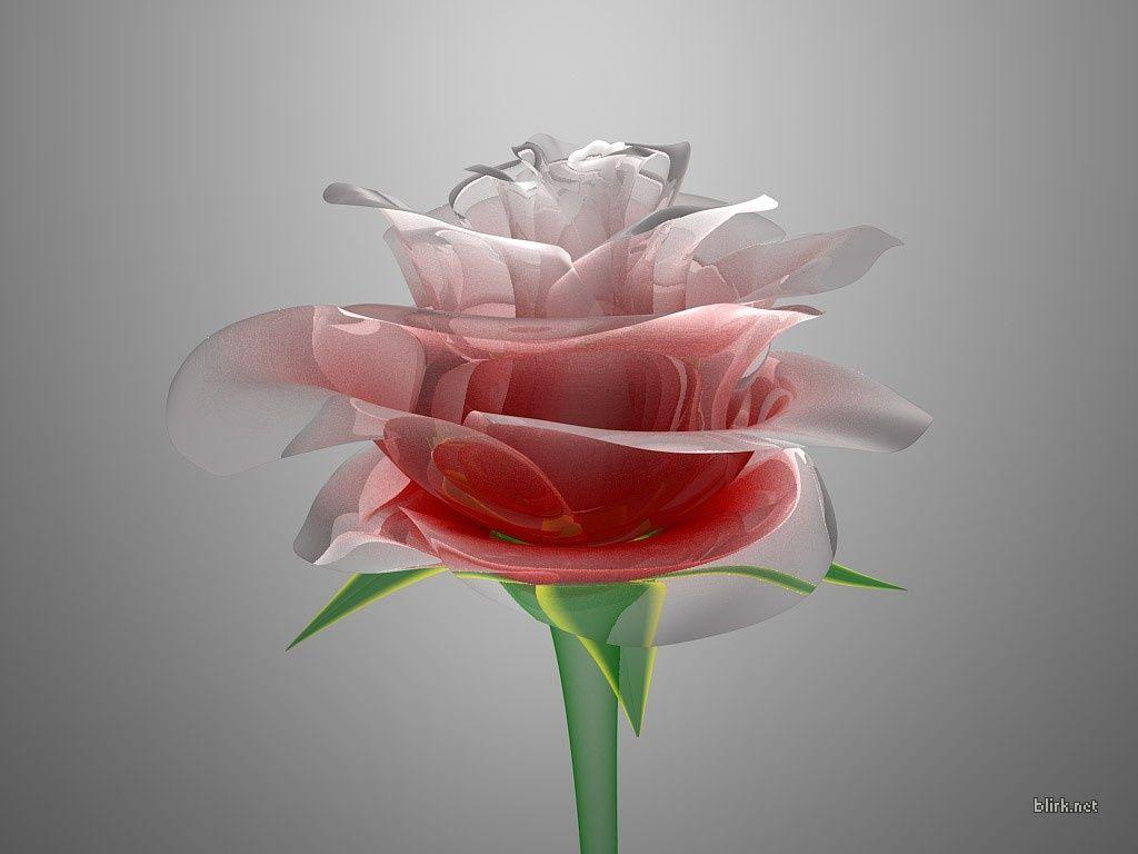 Darmowe Tapety Na Pulpit Komputera Fantastyczna Kwiaty Http Wallpapic Pl Fantasy I Kreskowki Fantastyczna Kwiaty W Flowers Flower Quotes Beautiful Flowers