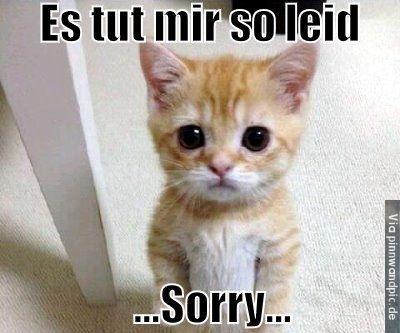 Bilder sorry es tut mir leid