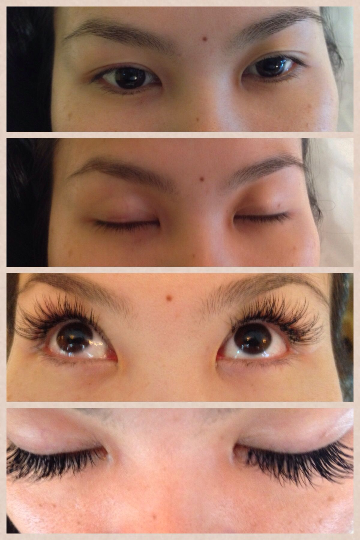Argan Oil Eyebrows : argan, eyebrows, Argan, Eyebrows, Before, After, Eyebrow, Poster