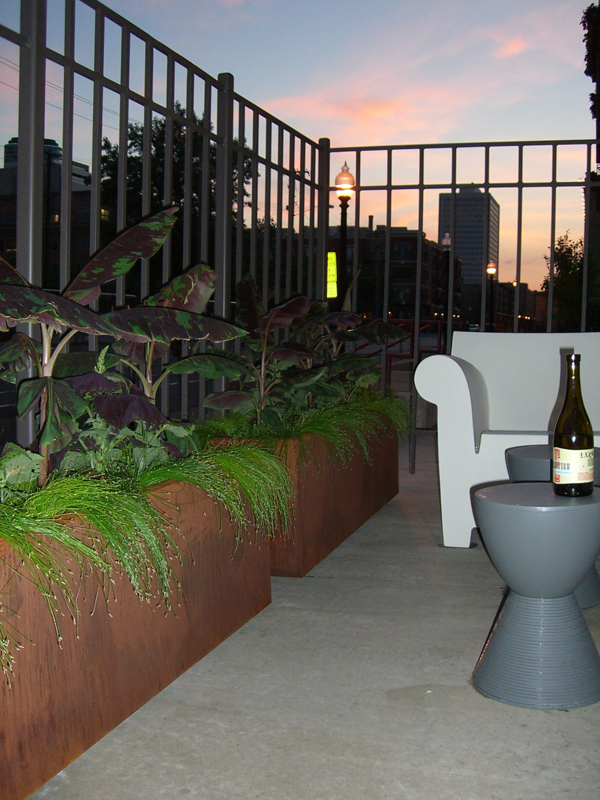 Downtown Minneapolis Sunset with Fresh Plantings