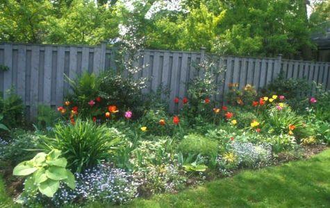Perennial Flower Garden Design, Perennial Garden Plans, Perennials