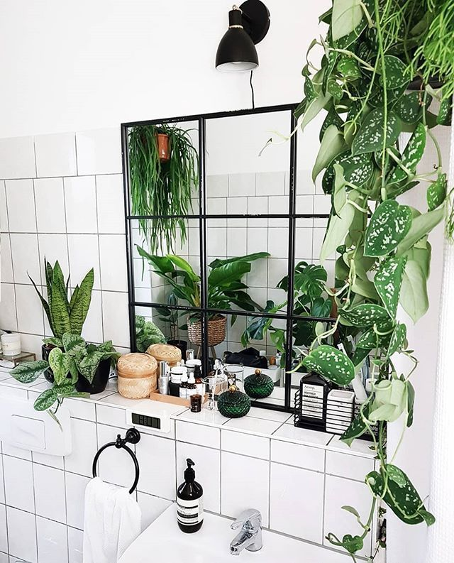 Photo of 8 Beautiful Hanging Plants Perfect For Apartments – TheFab20's