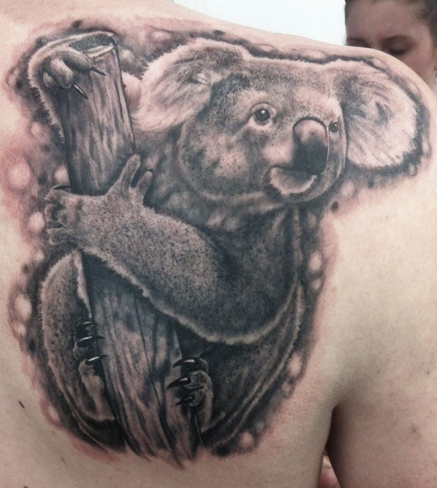 black and grey koala tattoo smeethshinko grey black and grey koala tattoo