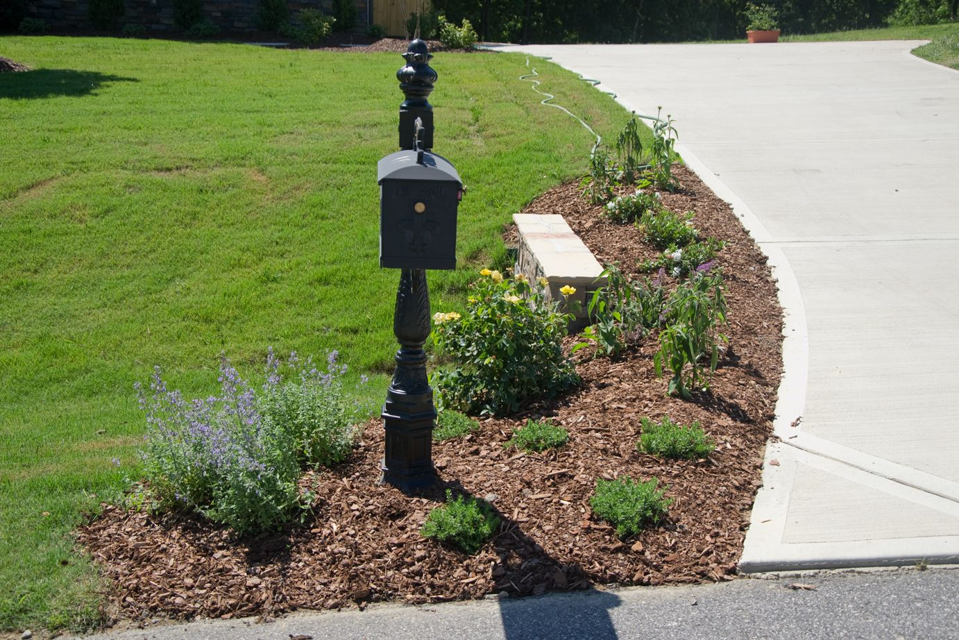 pin cheri west landscaping