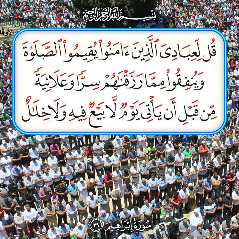 Desertrose Aayat Bayinat Prayer For The Day Quran Verses Holy Quran