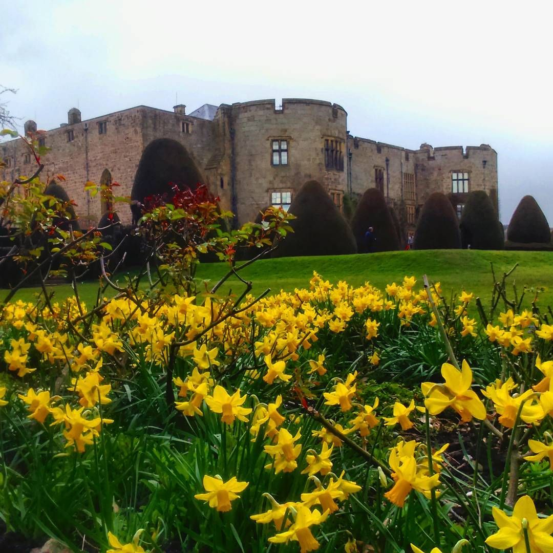 Chirk Castle, don't forget to follow me on Instagram at https://www.instagram.com/studentinsnowdonia/