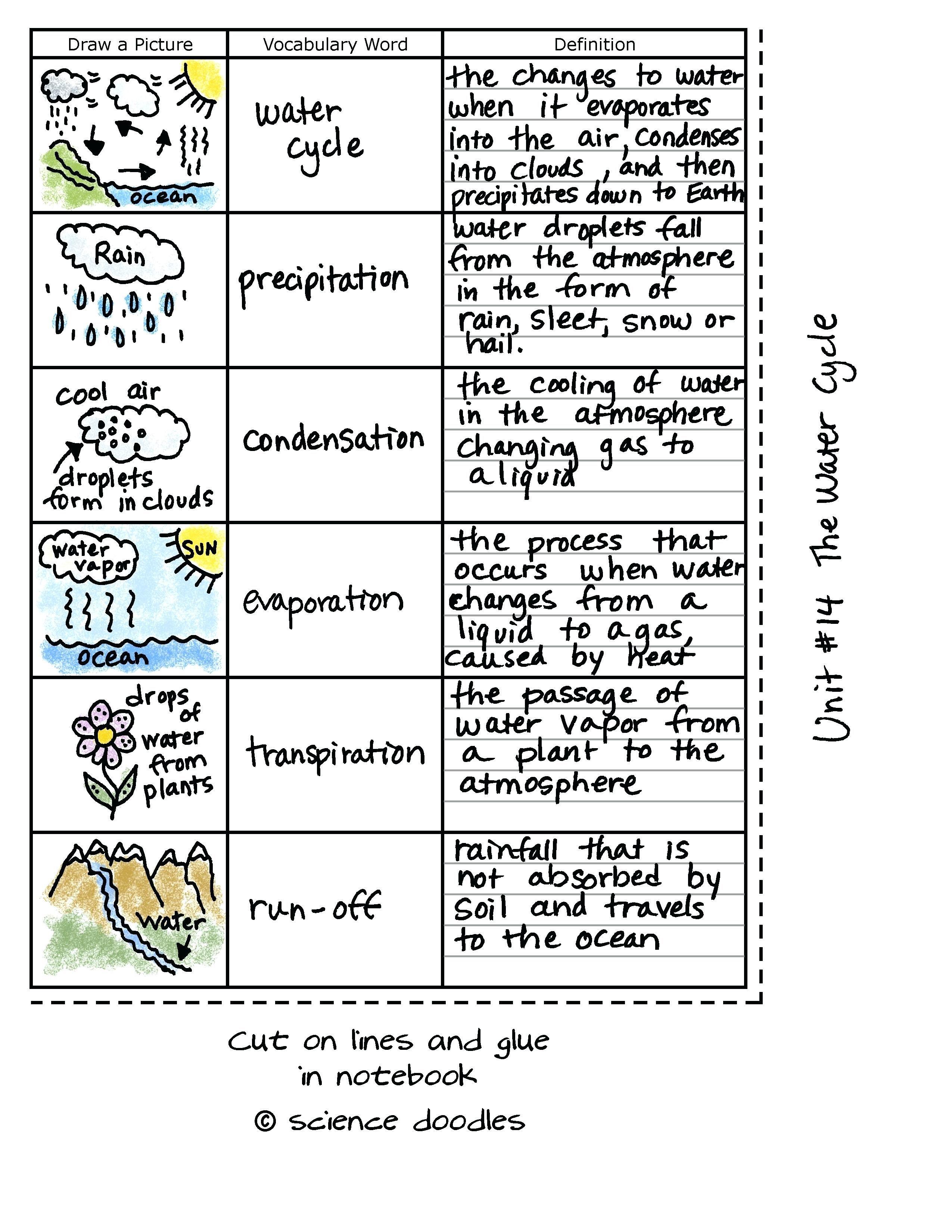 36 Simple Water Cycle Worksheet Ideas Https Bacamajalah Com 36 Simple Water Cycle Worksheet Ideas Science Doodles Elementary Science Teaching Science