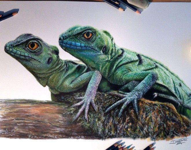 Monkey Drawing Realistic Pet Portraits