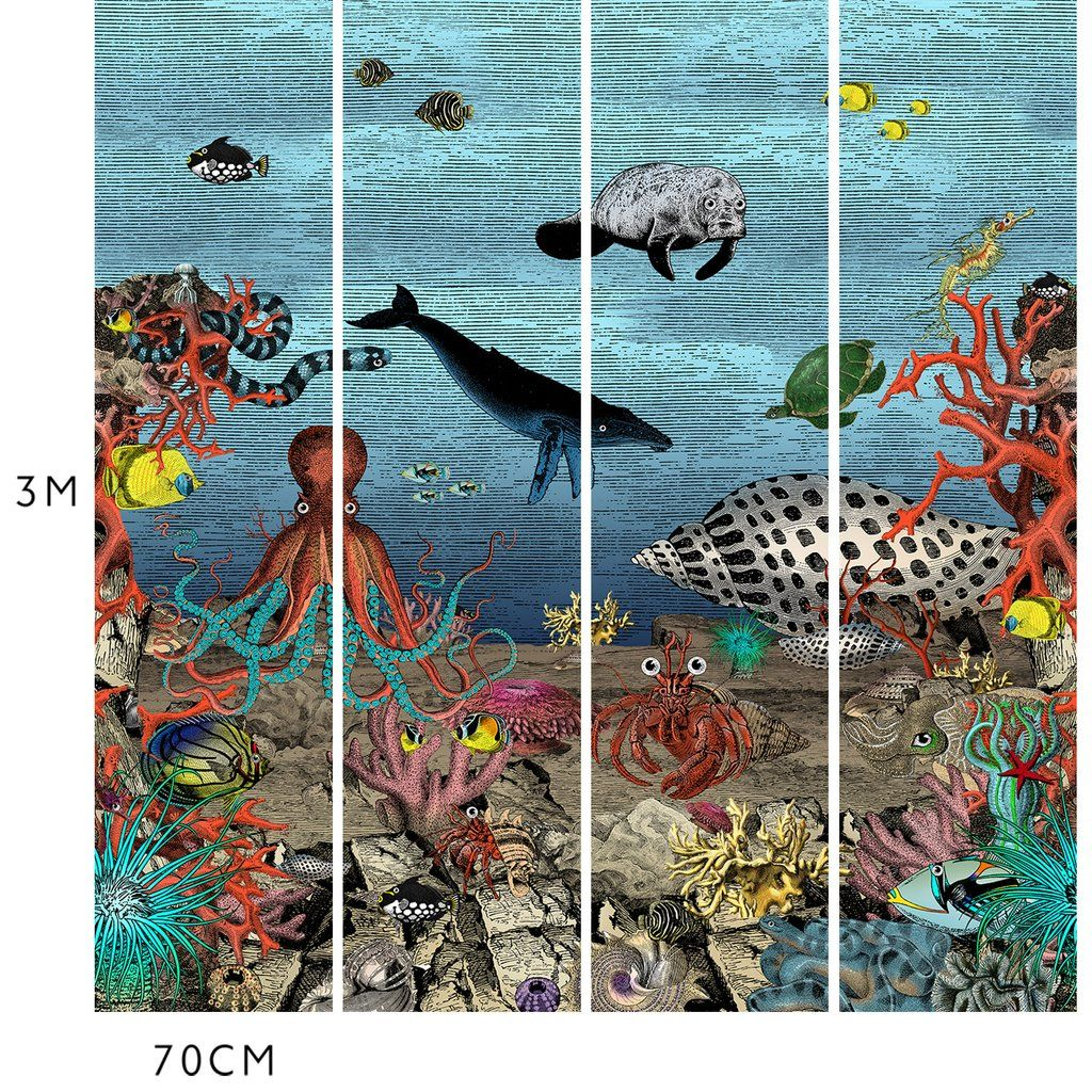 The Great Barrier Reef Wall Mural In 2019