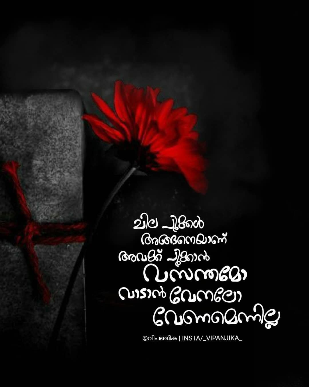 Pin By Abcigh On Malayalam Nostalgic Quote Literature Quotes Status Quotes