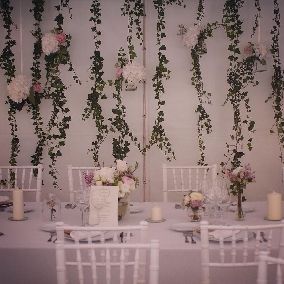 Suspension lierre fleurs salle de reception  mariage  fleurs mariage  Pinterest
