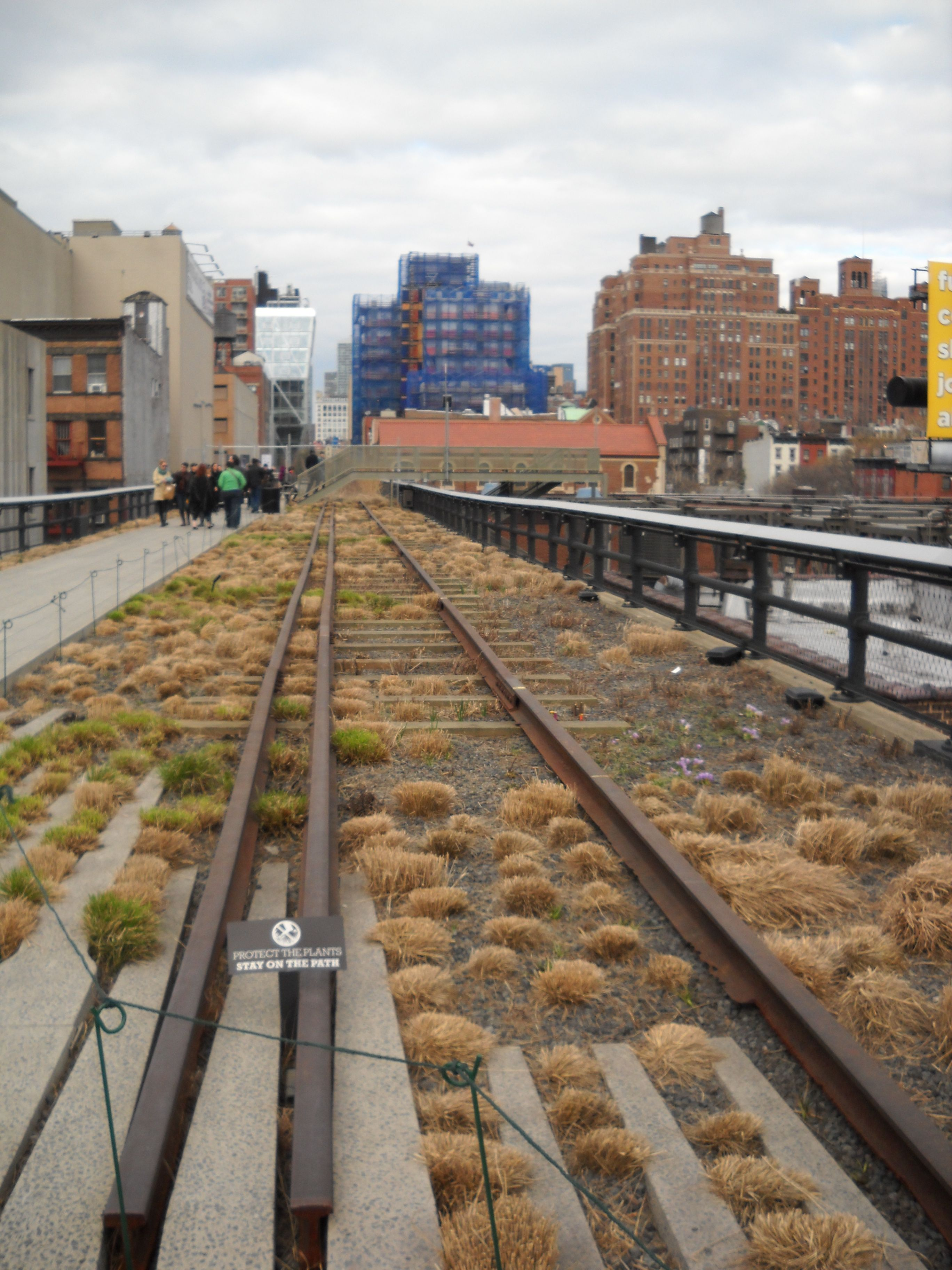 the highline NYC // raised old railroad line, converted